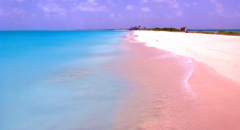 Pink-Beaches-of-Barbuda Photo Credits: The Daily Records